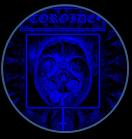 toroide.jpg 1